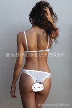 Plus 2017 Ladies Sexy Lingerie Lace Underwear G-string Bra Panty Set Women  Lace bra brief sets nightwear Transparent