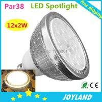 Free shipping High Power 12X2W E27 Par38 LED Lamp Bulb Spotlight Cool Warm White 110v 220v