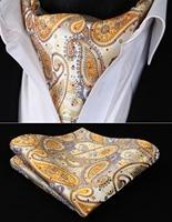 RP706YS Yellow Gold Paisley Ascot Tie Pocket Square Woven Men Party wedding Tie Necktie Handkerchief Set