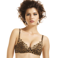 Sexy Transparent Bras Seamless Push Up Embroidery Leopard Brassiere Luxury Lace Bralette Ladies Ultra Thin Acousma