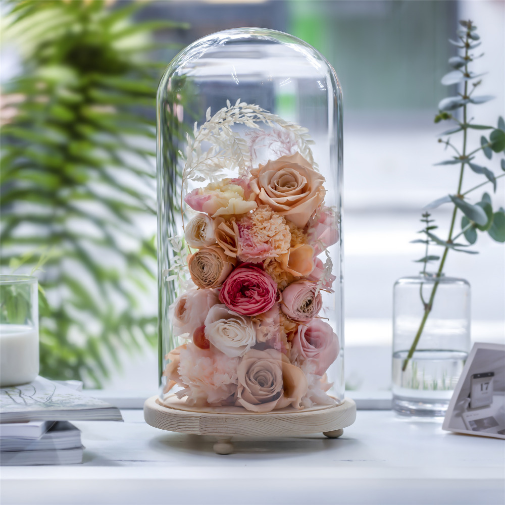 Plants Vase Clear Glass Dome With Wood Cork Base Bell Jar Cover Plants Display C