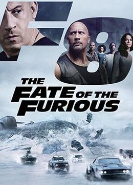 《速度与激情8》2017年美国动作,犯罪电影在线观看