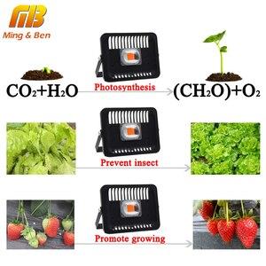 Image 2 - [MingBen] светодиодный светильник для выращивания растений на открытом воздухе, 30 Вт 50 Вт 100 Вт 220 В, водонепроницаемый, высокая мощность, для завода, с разъемом европейского стандарта, форма доставки RU SP