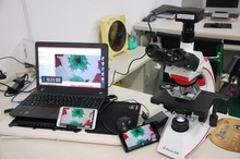 Cheapest prices New Design Phenix digital Camera and USB 2.0 with 3.1 Mega Pixels Digital Microscopes