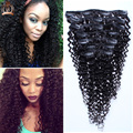 African American Clip in Human Hair Extension Full Head 6A Brazilian Virgin Hair Kinky Curly Clip in Extension Black Women