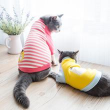 Super pretty suspender sweater with stripes for Sphynx