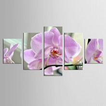 5 Pieces/set Wall Art Moth orchid Picture Oil Painting Canvas Abstract Print For Home Modern Decoration wall art(China)