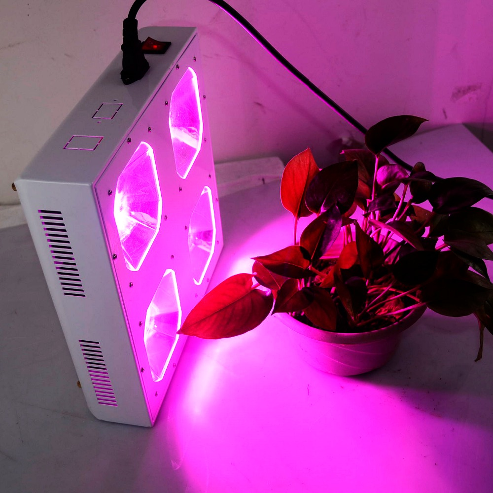 Us 259 7 300watt Cob Full Spectrum Led Grow Light With Reflector For Hydroponic Medical Plants Growing And Flower In Led Grow Lights From Lights