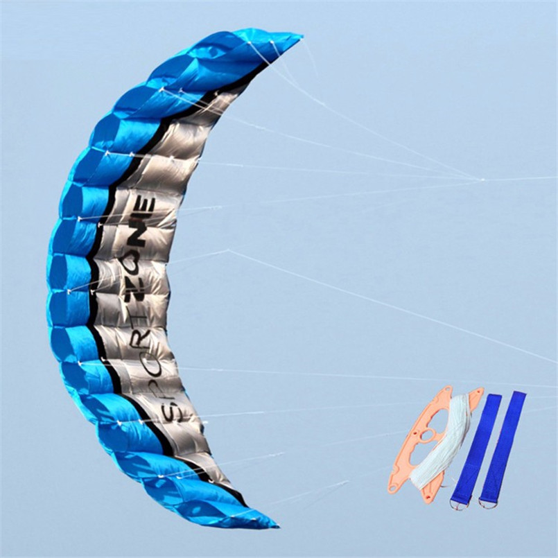 2.5 Meter Novelty Dual Line Flying Kite Parafoil Sports Software Paragliding Nylon Beach Kite Stunt Outdoor Toys For Adult Kids