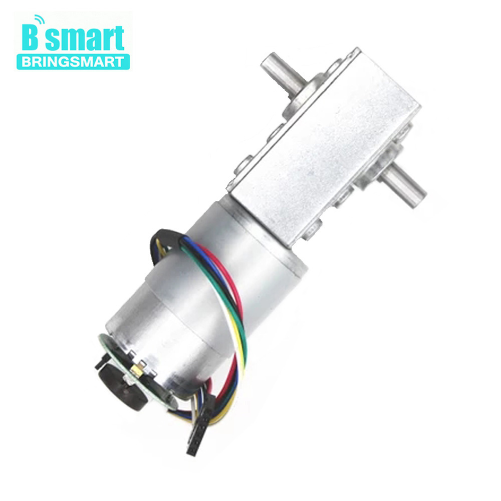 Bringsmart 5840-555B Worm Gear Motor 12V DC Encoder Motor Double Shaft 16-470rpm 24V High Torque DIY Electronic Equipment