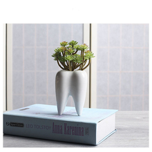 White Ceramics Flower Pot Tooth Succulent Small table Plant Potted Home Decoration Bonsai Green
