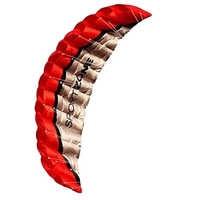 High Quality 2.5m Red Dual Line Parafoil Kite WithFlying Tools Power Braid Sailing Kitesurf Rainbow Sports Beach