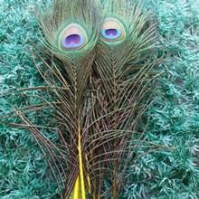 Красивые желтые перья с павлиньим глазом 10 шт 25-30 см/10-12 дюймов украшения торжества