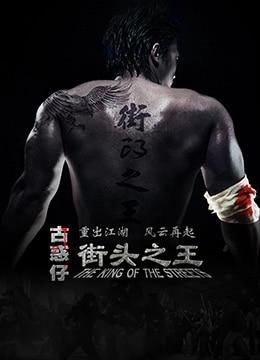 《街头之王》2012年中国大陆剧情,动作电影在线观看
