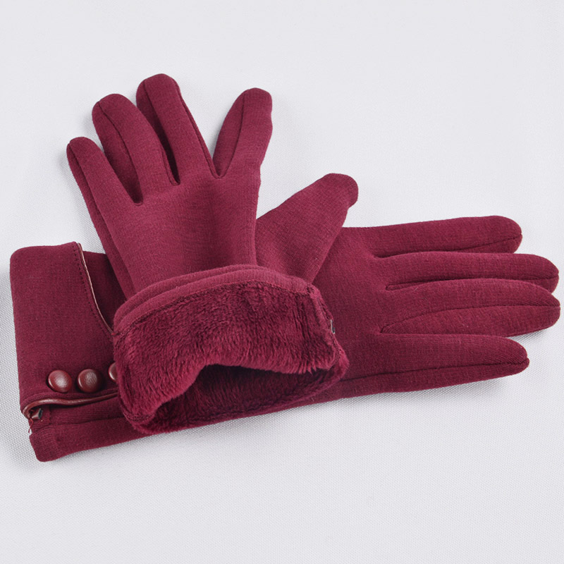Moisture Absorbing Touch Screen for Women Gloves with Good Elastic and Windproof Property Suitable for Outdoor Cycling and Hiking in Winter 2