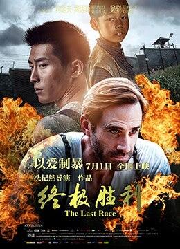 《终极胜利》2016年中国大陆,香港,美国剧情,历史,战争电影在线观看
