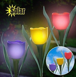 Promotion, Led solar  light/lamp, garden/outdoor/courtyard, flower, tulip, freeshipping byEMS