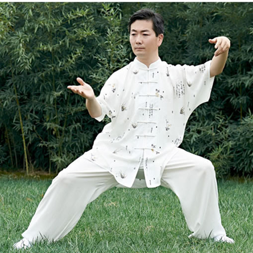 Chinese Traditional Kung Fu Tai Chi Clothing Wing Chun Clothes Shaolin Martial Arts Uniform T-shirt Shirt And Pants Men Women