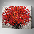 flowers pictures of oil painting on canvas decoration 40X50cm framed wall painting flower hand painted canvas oil paintings G431