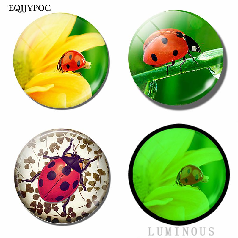 Glass Luminous Ladybug and Flowers Fridge Magnets for Refrigerator  Magnetic Stickers Cute Home Decor
