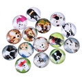 20mm Glass Cabochons Embellishment Cameo Flatback Scrapbooking Dome Seals Flower butterfly Dog Navigation Random Mixed 10pcs