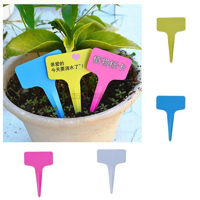 Plastic Plant Label Flower Tags Markers Nursery Garden Labels Stick 60x100mm Gardening Signs Card Etiquetas De