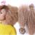 Top Quality grampo em extensões de cabelo humano brasileiro 10 '' - 26 '' # 27 mel cor loira Jerry onda 70 g - 120 g Curly Weave grampo em