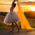Adult Tutu Marsala Tulle Skirt Tea Length Adult Tutu Marsala Wedding Bridal Tutu Tulle Skirt Bridesmaid Tutu Tulle skirt BSQ001A