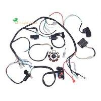 Complete Electrics Coil CDI Magneto Stator Wiring Harness for 4 Stroke ATV QUAD 150CC 200CC 250CC 300CC Dirt Bike 4 wheelers