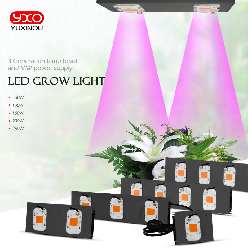 COB DOB Led Grow Light Full Spectrum 50W 100W 200W 300W for Vegetable Flower Indoor Hydroponic Greenhouse Plant LampCOB DOB Led Grow Light Full Spectrum 50W 100W 200W 300W for Vegetable Flower Indoor Hydroponic Greenhouse Plant Lamp