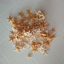 100pcs Mini Starfish Craft Decoration Natural Sea Stars DIY Beach Cottage Wedding Decorv natural starfish natural crafts