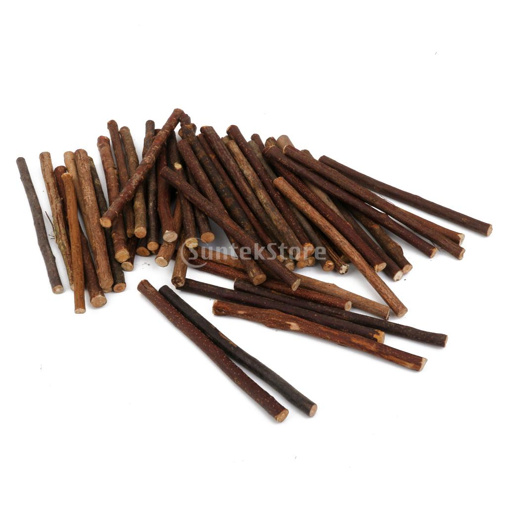 Home Decor Discount Stores Spmart Boxwood Natural Wood Stick Branch For Diy Art Craft