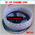 5m 300LED 12V 5050 SMD flexible Waterproof(IP68) LED light strip,60LED/m Cold white,White warm free shipping
