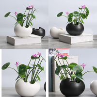 2x растительный горшок прочный керамический держатель Контейнер для цветов растение суккулент