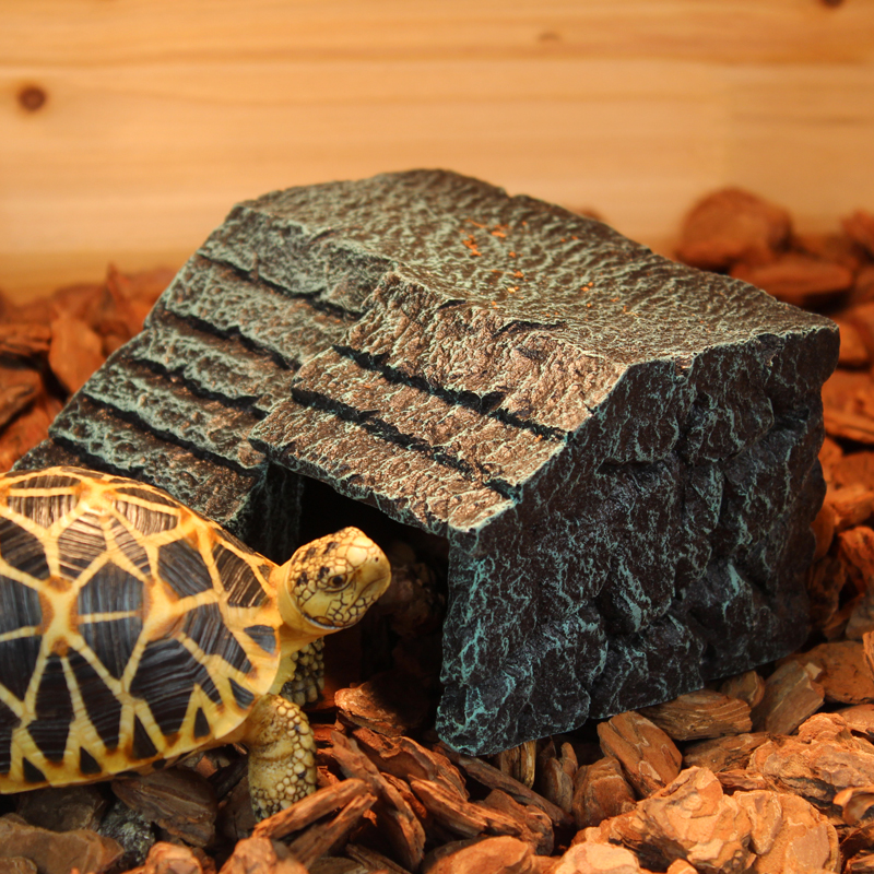 My turtle store coupon code