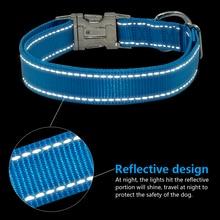 Personalized laser engraving Yorkie Collar