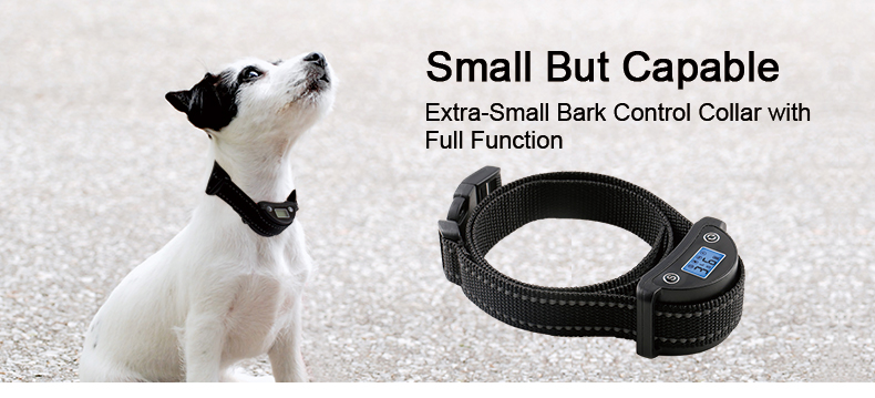no barking device for dog