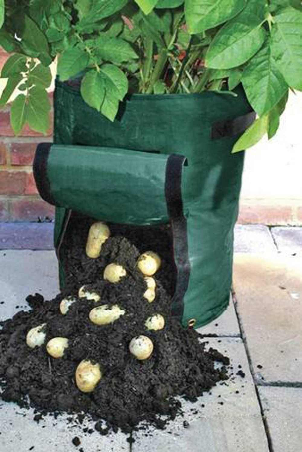 Potato Planting PE Bags Cultivation Garden Pots Balcony Garden Vegetable Plant Pouch Root Container Grow Bag 1 Pcs