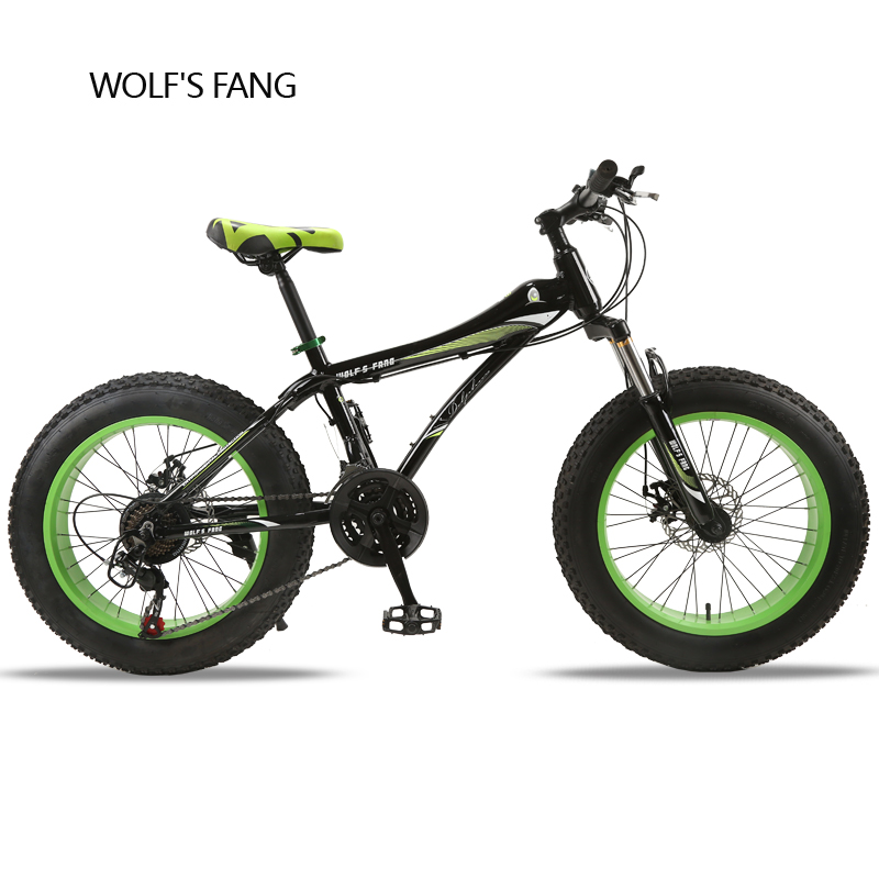Bicycle 20X 4.0 Mountain Bike Fat Bike road bike 21 speed Front and Rear Mechanical Disc Brake Hard Frame Unisex Snow bike