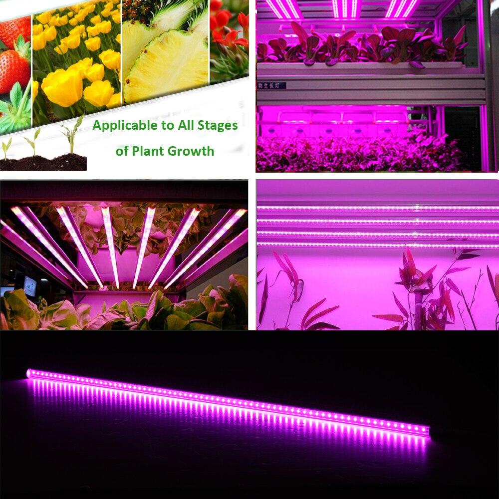 T8 30cm 45cm 60cm Double-line 10W 20W 30W 40W 60W 80WT8 Led Grow Light Full Spectrum Indoor Greenhouse Growing Tube Pink Light