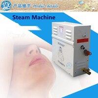 6KW 220 240V Household Steam Machine Steam Generator Sauna Dry Stream Furnace Wet Steam Steamer Digital