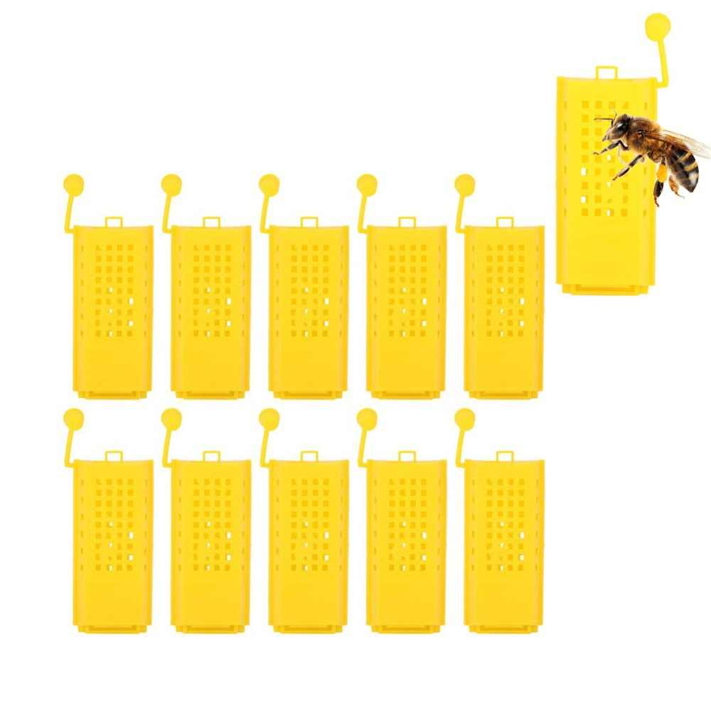 Catcher Queen Introduction Cage Bee Queen Beehive Cages Beekeeper Tool Set