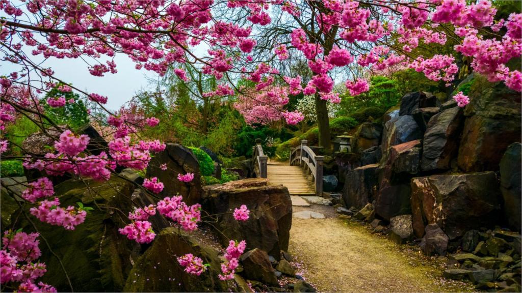 Jardines de piedra japon s compra lotes baratos de for Arboles jardin japones