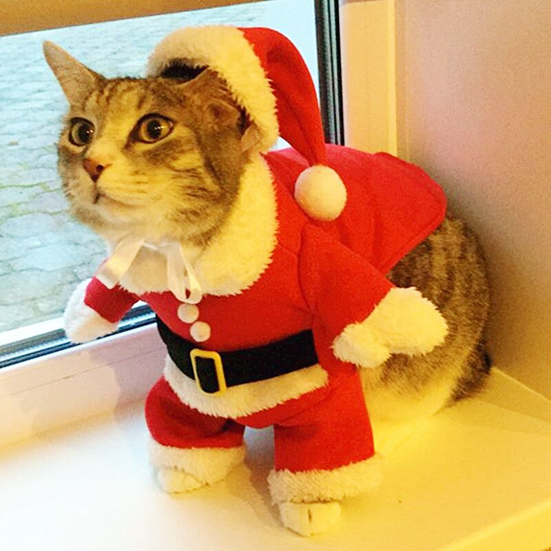 Christmas Cat Clothes Suit Winter Pet Clothes for Cat Costume Suit Warm Cat Coat Jacket Santa Claus Christmas Pet Apparel 40 ...
