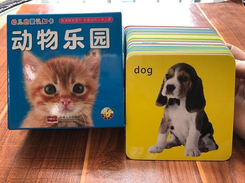 Cartões de Aprendizagem Inglês Bebê Do Gato