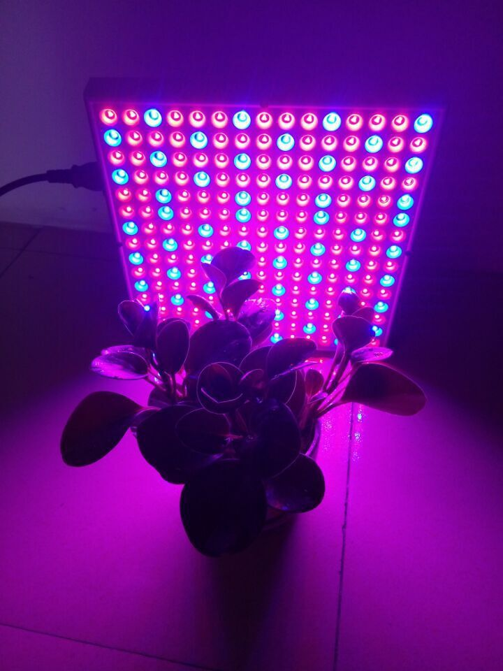 2015 Top Diy Led Grow Light Kit 14W LED Panel Grow Lights
