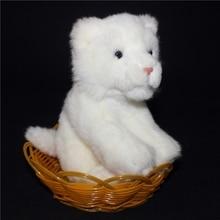 Kawaii Белый Лев Кукла Детские Игрушки Подарок На День Рождения Милые Плюшевые Игрушки Магазины