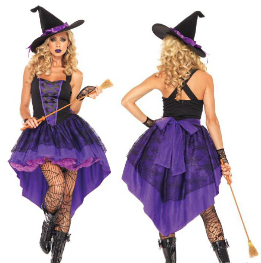 Sexy Adult Womens Broomstick Wicked Witch Of the West Costume ...
