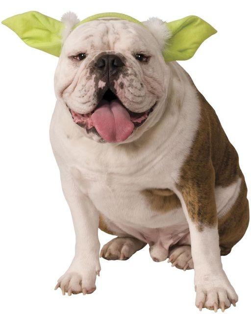 new star wars yoda dog headband costume pet halloween costume 2 size