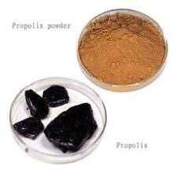 US $220 0  Hot sale Free shipping 1kg 90%content pure natural bee raw  propolis extract powder healthcare products for home use ב-Hot sale Free
